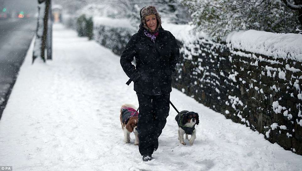 24e6b87500000578-2919826-a_woman_walks_her_dogs_in_bradford_this_morning_a_spokesman_for_-a-15_1421852956220